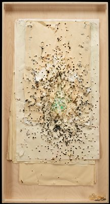 layers of backs of rectangular paper targets of different sizes shot through with bullet holes, with staples sticking out of edges; black and grey on reverse of paper, with some green at center; in plywood shadow box with Plexi cover