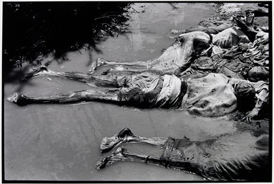 three decomposing bodies laying in a stream; middle body is wearing a striped sweater