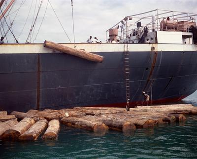 Color image of a dark blue and white ship with logs floating in the water next to it; one log is suspended and is being loaded or unloaded