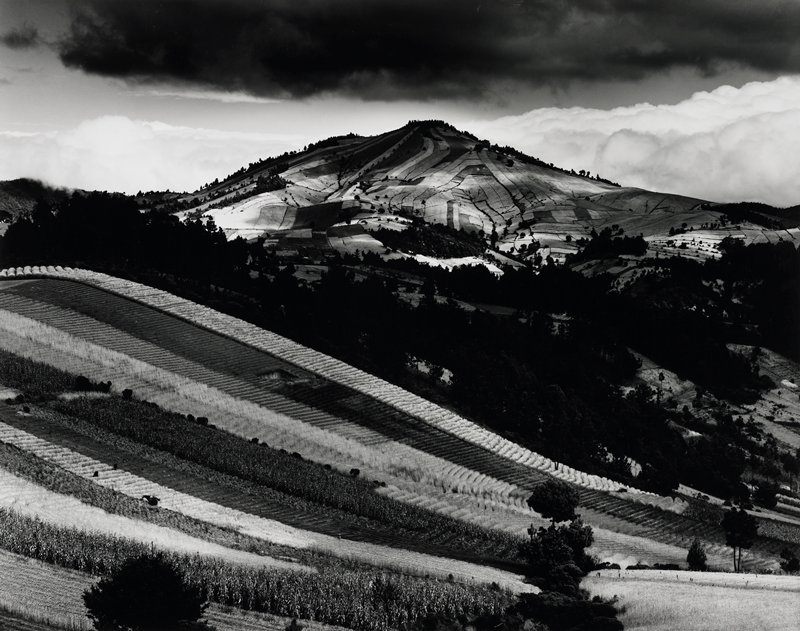 hillside planted in strips of corn and grain in foreground; fields on hill in center back well defined; dark cloud overhead