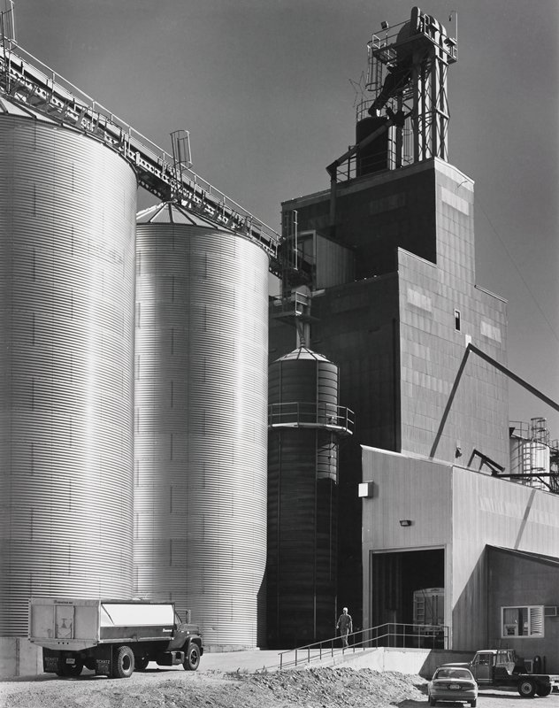 grain elevator with three silos, elevator building and office; male figure on ramp; dump truck, pickup and automobile parked in yard