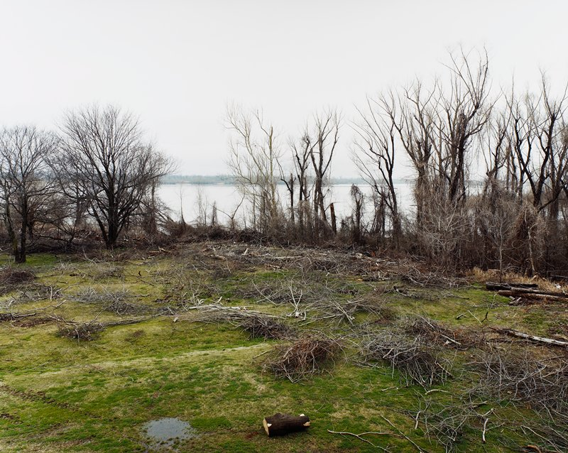 clearing near water with trees at bank; grey sky; piles of brush and branches; small log, foreground center