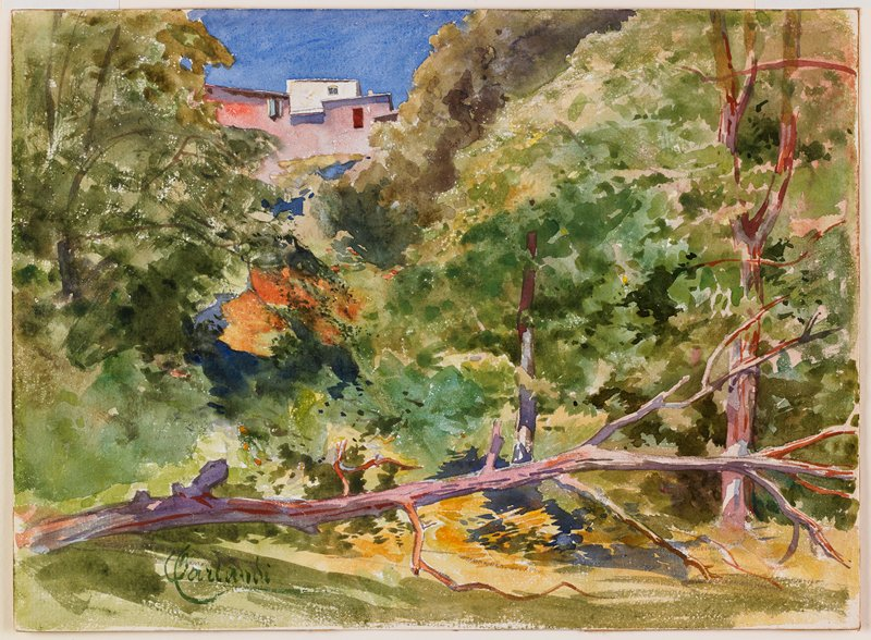 wooded hillside; house, pink and white, at top left of center; dead fallen tree horizontal across foreground