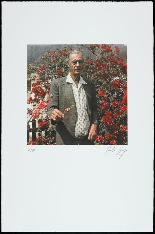 image of elderly man with moustache wearing grey patterned suit jacket and light blue shirt with tan and brown designs, standing in front of bush with red flowers