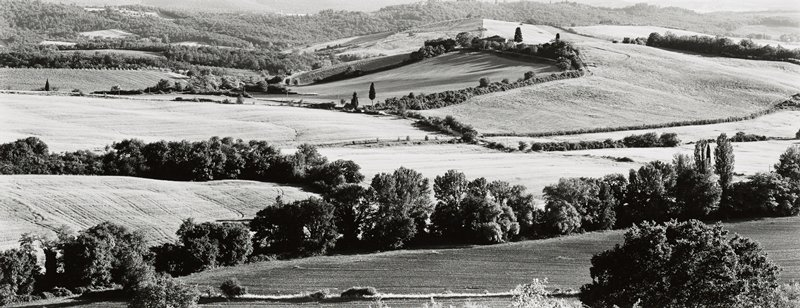 rolling farmland with fields and trees; many trees at top