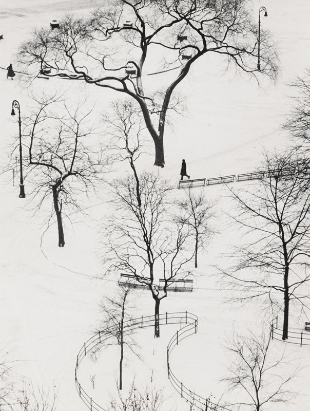 winding fences and rows of benches in a park in the snow; bare trees; light poles; dark figure at center; another figure at left edge, ULC