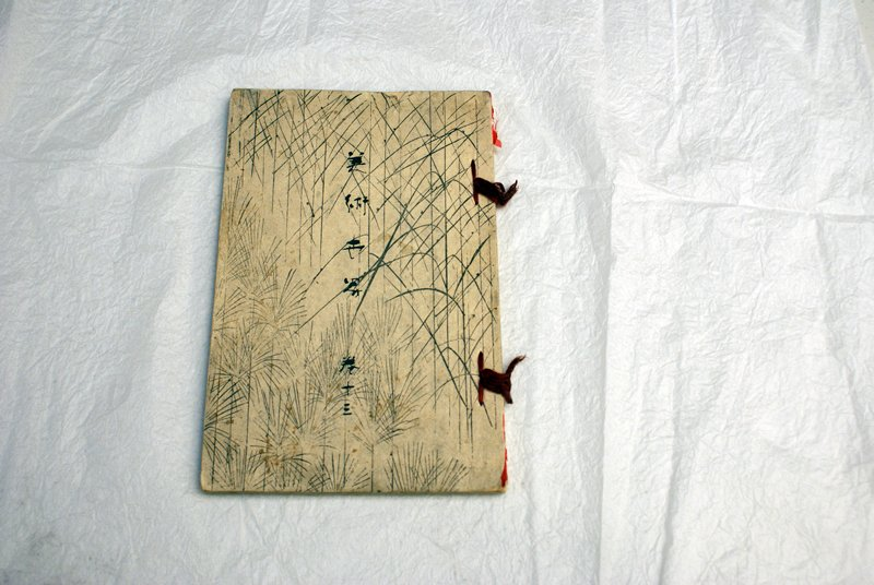 cover decorated with wispy lines resembling reeds and fronds; bound with red ribbon; variety of richly colored images inside, including beautiful women, insects, landscapes, birds, and men of different ages