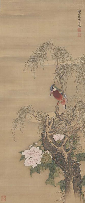 red breasted bird with blue, green, and tan coloring; blue crest; perched on gnarled willow tree at R; pale pink blossoms with dense foliageentangled in tree at LRQ