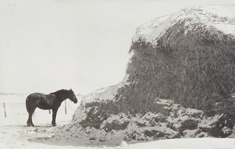 horse at left facing a large snowcovered haystack; snowcovered field in background; mounted on a board