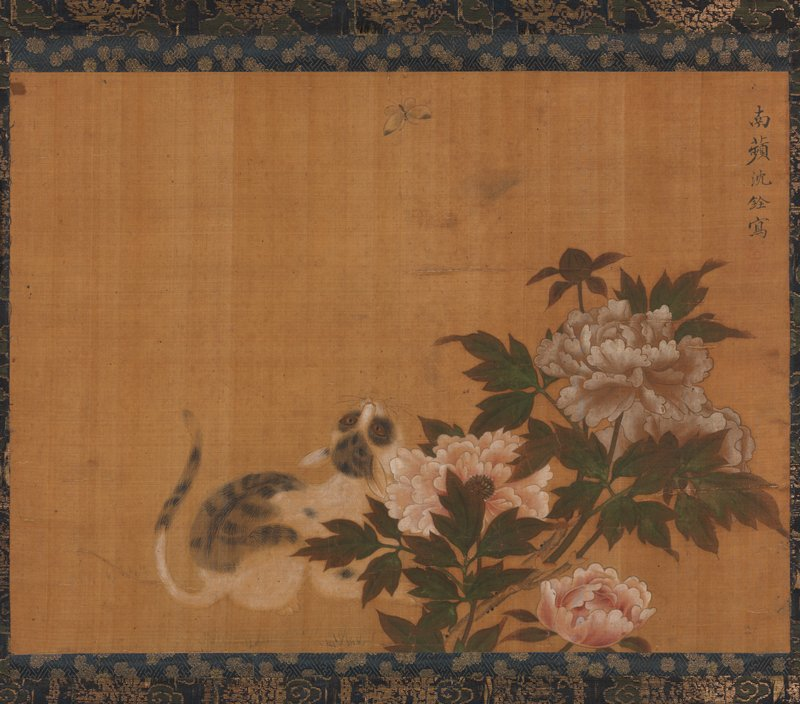 image of white and gray cat crouched behind blossoming white and pink peonies, hunting a butterfly at top C