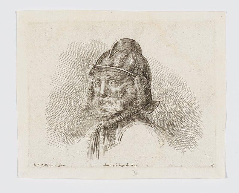 head of an old soldier with a bushy white beard, wearing a helmet