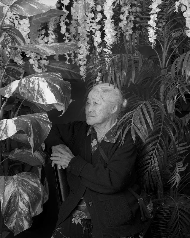 black and white photograph; portrait of an elderly woman wearing a black cardigan over a floral printed button up shirt; dangling white flowers on top edge of image; several large leaves on left edge; palm leaves along right edge; received framed/unglazed