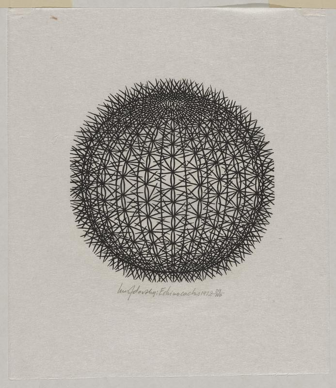 black-and-white image; round cactus