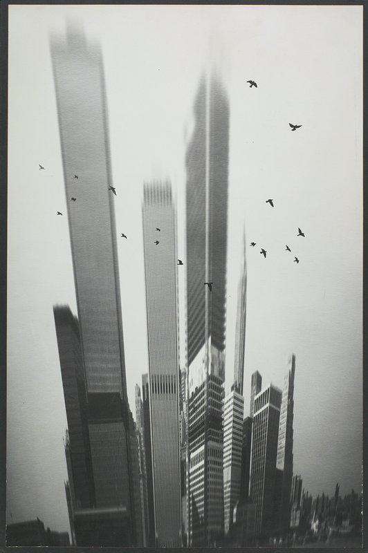 reflected image of artificially-elongated skyscrapers with flock of silhouetted birds in foreground