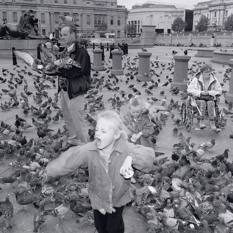 2 little girls in front one with mouth open and eyes shut; the other looking down, with a pigeon on her PL shoulder; man at left with pigeons on each arm, PL shoulder and on head; woman in a wheelchair at right; other pigeons on ground; Trafalgar Square