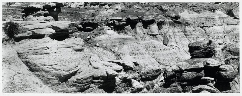 previously listed as a silver chloride contact print