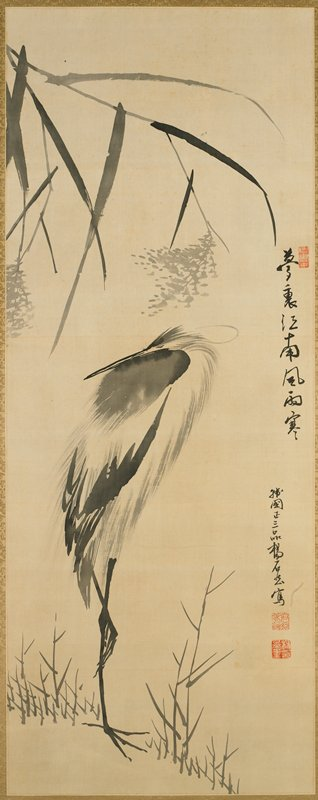crane standing on one leg with neck turned and head tucked behind back, standing among grass blades, tree branches hanging from above coming from left side