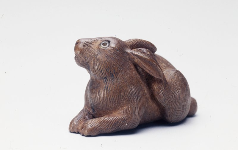 recumbent rabbit, scratching its head with its proper left rear paw