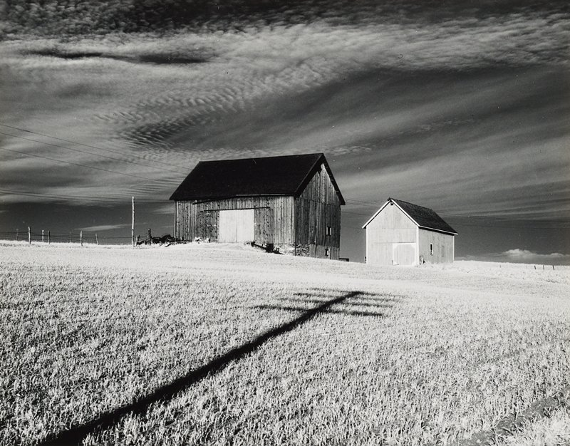 two barns in field; shadow of electric pole in foreground; clouds in rather dark sky