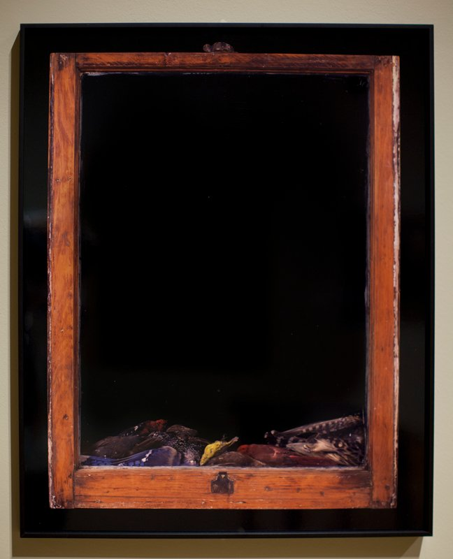 black ground, red window frame with several dead birds piled along bottom edge; received in black metal frame