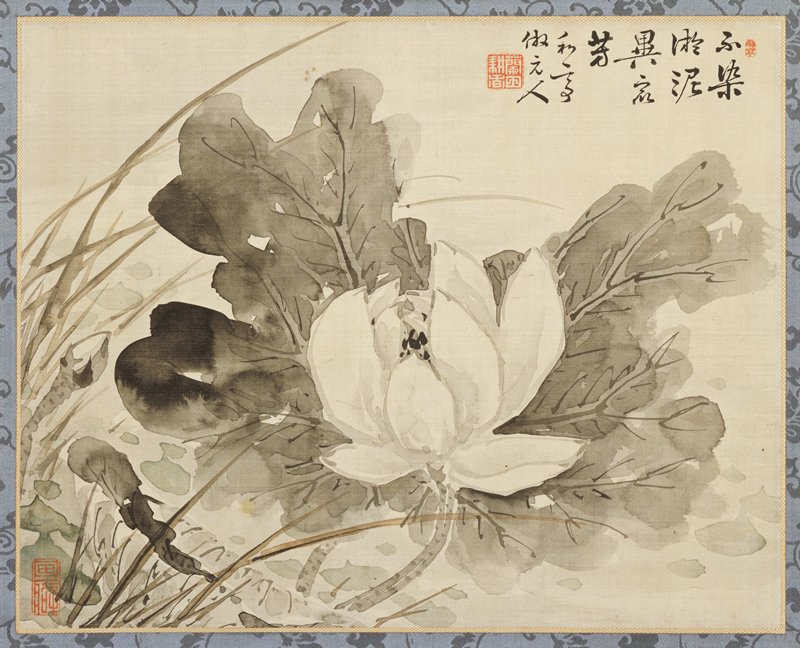 close-up view of a lotus flower and leaves; brushed in the boneless ink-wash style