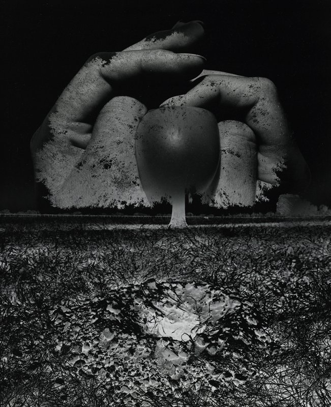 pair of giant hands at top, slightly folded, pressing an object between thumbs; negative image of grass and trees in foreground and over hands
