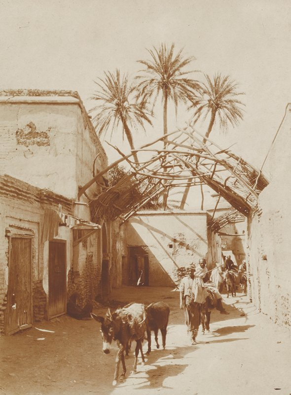 figures accompanied by and riding on donkeys through an ally with fragment of twig and branch roof overhang; three palm trees in background; Morocco
