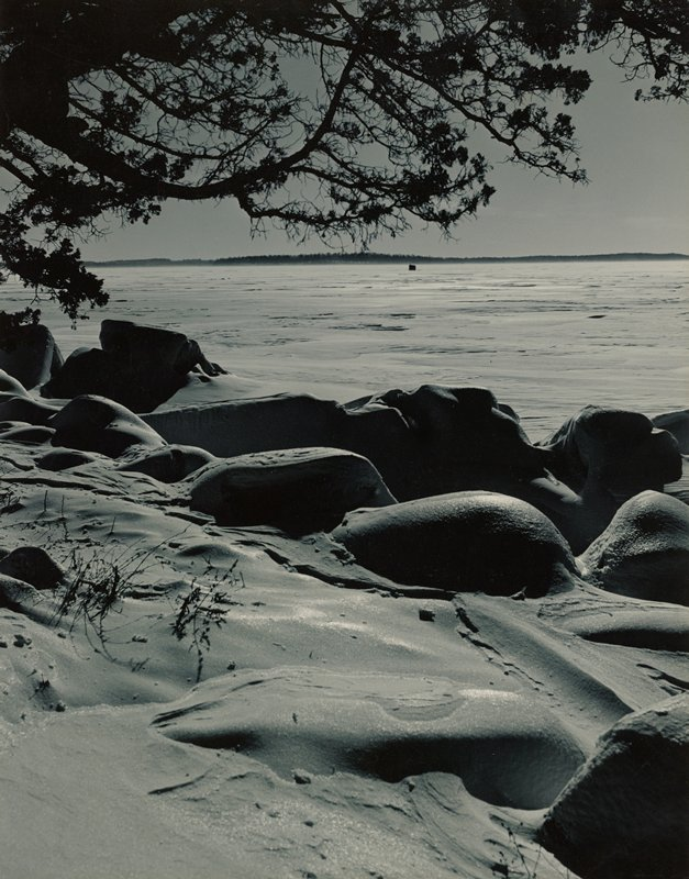 rolling mounds on shoreline covered with snow; silhouetted tree branches at top; frozen lake in middle ground